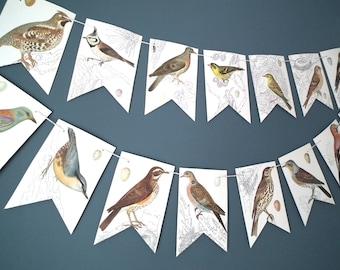 Bird Bunting, Bird Banner, Paper Garland, Bird Pictures, Paper Bunting, Bird Book Banner, Paper Garland, Book Bunting, Up Cycled Bunting