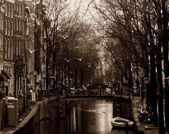 "Birds in Flight Over Amsterdam Canals - Fine Art Print - 5""x7"""