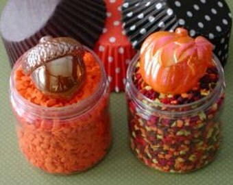 Pumpkin and Acorn Pics