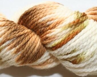 Hand Painted 100% Superwash BFL Wool  Aran Weight Yarn (115)