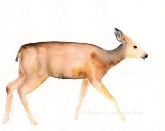 Deer Original Painting - Mule Deer - Watercolor 8x10 - Nature Art