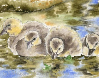 Duck Painting - All In A Row - Fine Art Print - Duck Watercolor - Ducklings - Giclee Print - water painting - reflection in water