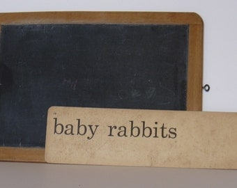"Vintage Phonics Card ""baby rabbits"", one sided, no.14"