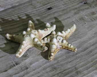 pottery sea star ... 2 pcs. ... pottery figurine ... clay ... ceramics ... home decor