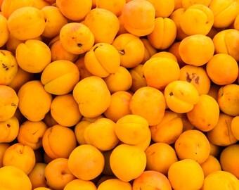 Food Photography - Kumquats - Farmers Market - San Francisco, CA - 8x10 Fine Art Photograph - Kitchen Wall Art