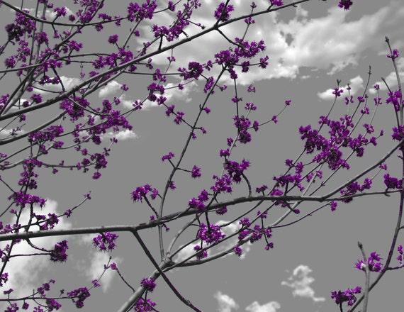 Gray Purple Flower Blossom Tree Branch Wall Art Home Decor