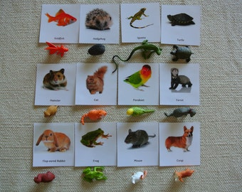 Montessori Common Pets 3 Part Cards with Miniatures