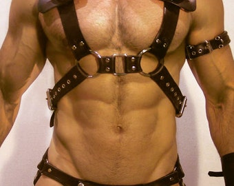 Leather Vitrian Harness