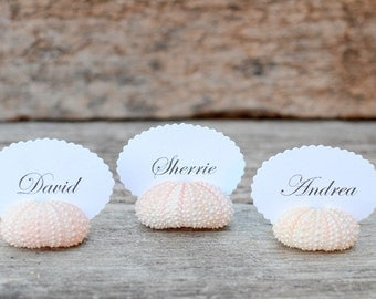 10 Sea Urchin Shell Place Card Holders for Beach Wedding - Natural Pink - Reception Table Chic Decor - Guest Escort Favor Ocean Nautical