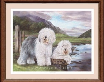 OLD ENGLISH SHEEPDOGS fine art dog print by Lynn Paterson