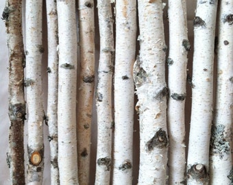 20 white birch logs
