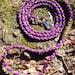 Survival paracord dog leash