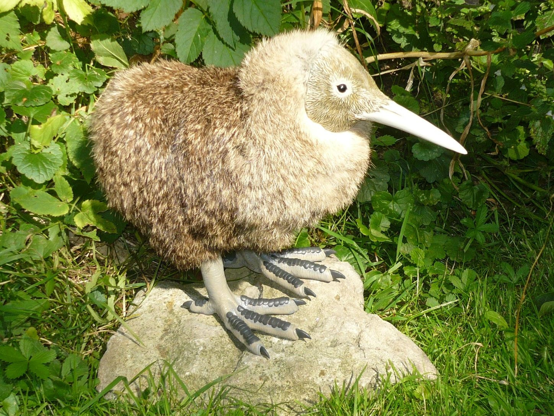 Baby Kiwi Bird OOAK Posable Doll Made to Order