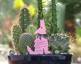 Desert Cactus Dish Garden 8 inch Glazed Pot