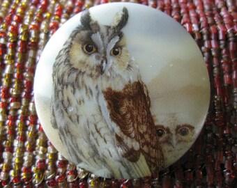 Horned Owl Family in Czech Glass Button 42mm
