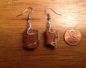 Petrified Wood Earrings wire wrapped (18)
