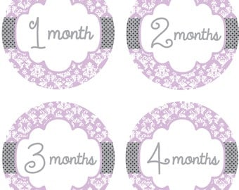 Baby Month Stickers Baby Monthly Stickers Girl Monthly Shirt Stickers Lavendar Gray Damask Shower Gift Photo Prop Baby Milestone Sticker 327