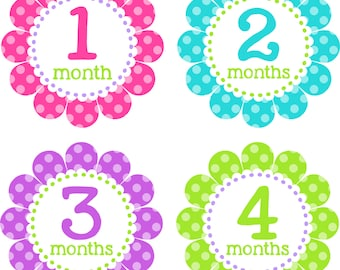 Baby Month Stickers Baby Monthly Stickers Girl Monthly Shirt Stickers Flower Pink Green Blue Shower Gift Photo Prop Baby Milestone Sticker