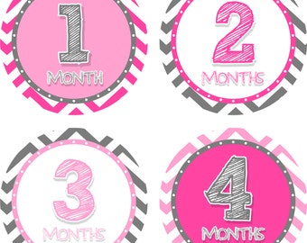 Monthly Baby Stickers Pink and Gray Sketch Bodysuit Stickers Monthly Baby Stickers Baby Shower Gift Photo Prop Baby Milestone Stickers