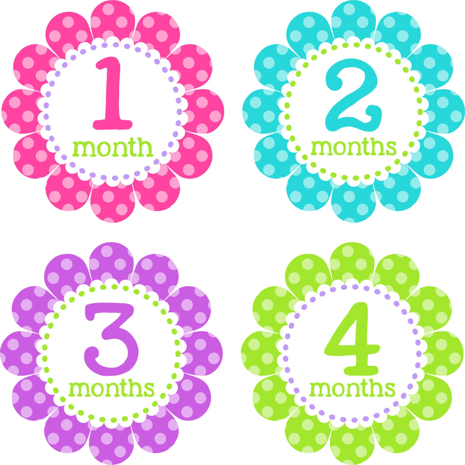 Baby Month Stickers Baby Monthly Stickers Girl Monthly Shirt