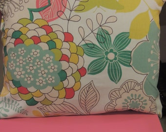 16 x 13 pillow slipcover in mod fabric