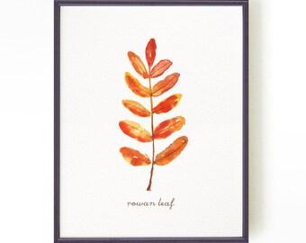 Botanical print Autumn Leaves Watercolor print Leaf art Leaves print Leaf painting Orange yellow decor Rowan leaf print Buy 2 Get 1 Free