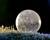 8x10 Silver Moon Rising