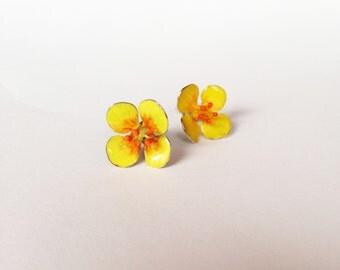 Flower Studs Earrings  -Tormentil -sterling & Enamel