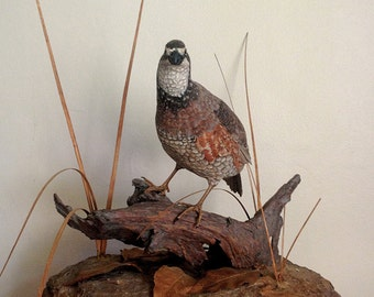 Hand Carved Northern Bobwhite Virginia Quail Sculpture