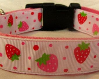Pink strawberry dog collar