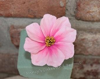 1 Cosmos Pink Sugar Flower