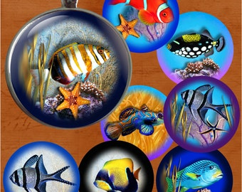Sealife - One Inch Round Digital Collage Sheet for Pendants, Magnets, Bottle Caps, Paper Crafts