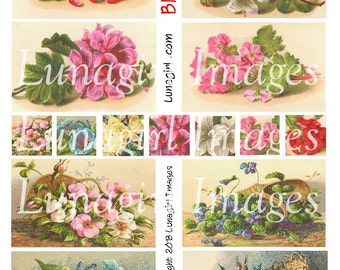 BLOSSOMS digital collage sheet, FLOWERS vintage images Victorian floral cards inchies altered art ephemera roses pink printables DOWNLOAD