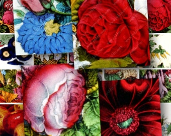 Flowers Roses Fruits from Vintage Hand-Colored Lithographs in 1-inch squares -- piddix digital collage sheet no. 55