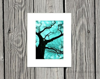 """Modern Wall Decor - Teal, Black, Nature Picture, Monochrome, Tree Photograph - 5x7 inch Photo Matted to 8x10 inches - """"An Evening to Dream"""""""