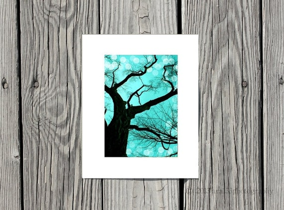 "Modern Wall Decor - Teal, Black, Nature Picture, Monochrome, Tree Photograph - 5x7 inch Photo Matted to 8x10 inches - ""An Evening to Dream"""