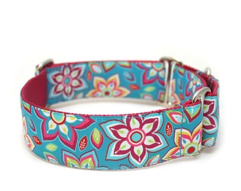"1.5"" Maui martingale or buckle dog collar"