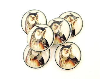"""6 SMALL Owl Buttons.  Horned Owl Sewing buttons. 1/2"""" or 13 mm round."""