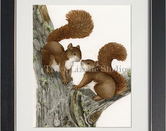 Squirrels - archival watercolor print by Tracy Lizotte
