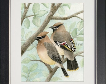Bird Tree with Waxwings - archival watercolor print by Tracy Lizotte