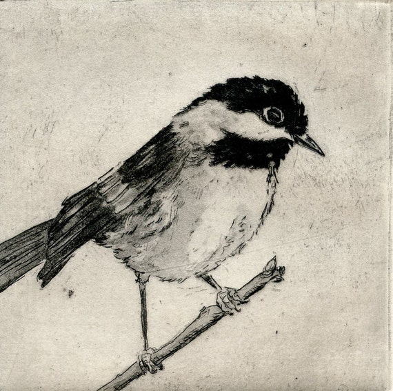 Chickadee, Fine Art Etching