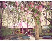 Pink Carousel Photo with Apple Blossoms - Paris photography, nursery decor, wall art, 9x12  Original Fine Art Photography