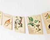 Christmas garland, Christmas Bunting, Winter garland,  Eco Wedding Banner. Rustic wedding Pennants, Holly, Ivy, Mistletoe