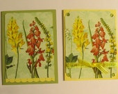 Beautiful Yellow and Rose Flowers - Set of Two Note Cards - Silky-Feeling Finish - Very Unique