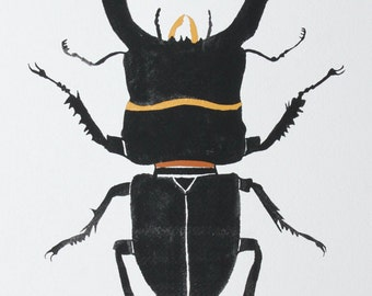 Black Beetle Illustration Painting - Watercolor Art - Stag Beetle Archival Print