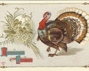 Turkey & Pumpkin Arrangement Embossed and Gold Gild Vintage Postcard Vintage Thanksgiving Greeting Turkey Autumn Cornucopia