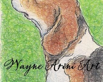 Beagle Art - Original Dog Drawing - Beagle Portrait