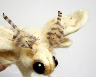 Moth sculpture, needle felted bug, Soft sculpture, venezuelan poodle moth MADE to ORDER, white butterfly, felt insects, curio collectible