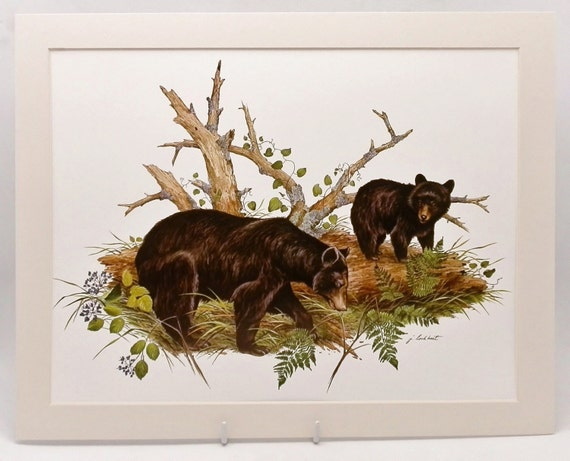 Black Bear Print Mountain Cabin Decor Bear Cub Wall Art