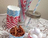 Light Blue & Red Chevron Small Baking Cups or Straw Assortment